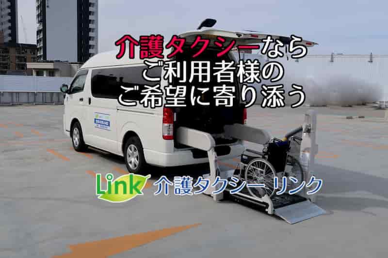 link-visual